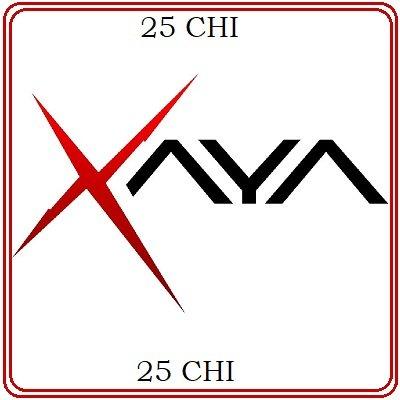 25 XAYA (CHI) Mining Contract