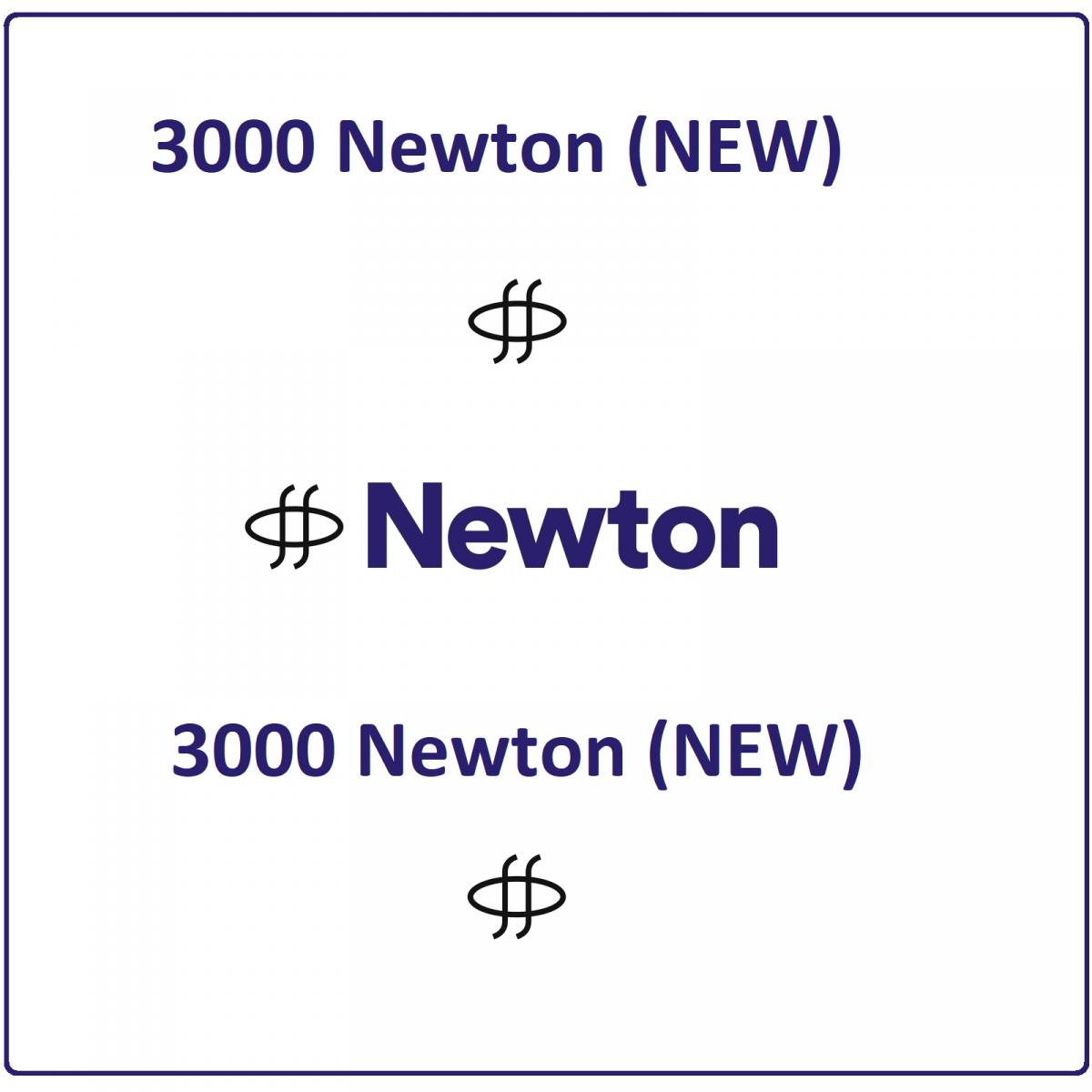 3000 Newton (NEW) Mining Contract